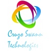 internship at Cruzo Swann Technologies