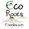 internship at Eco Roots Foundation