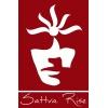internship at Sattva Rise